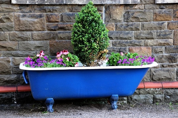How To Start a Home Container Gardening.