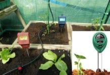 Garden Soil pH Testing.