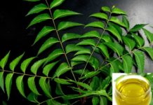 Neem Oil Pesticide Formulation.