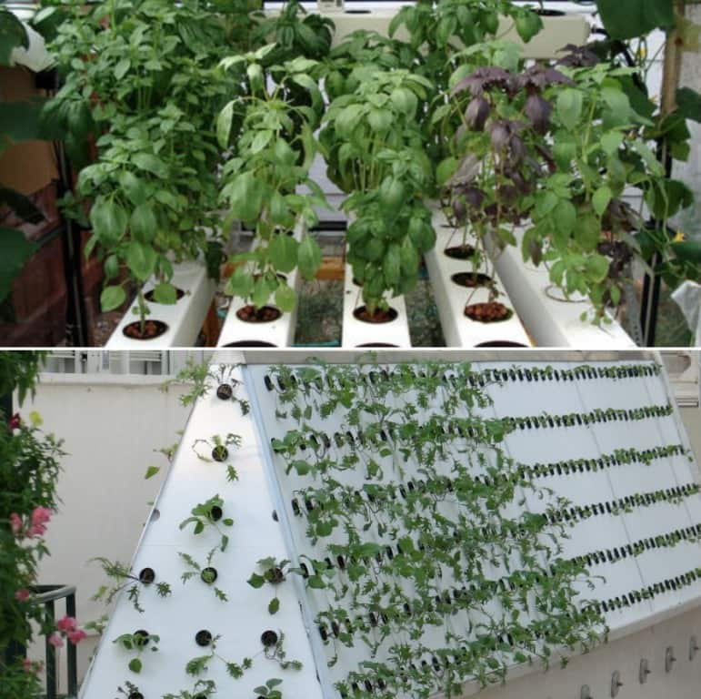 Aeroponics System Guide.