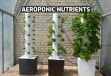 Aeroponic Nutrients Guide.