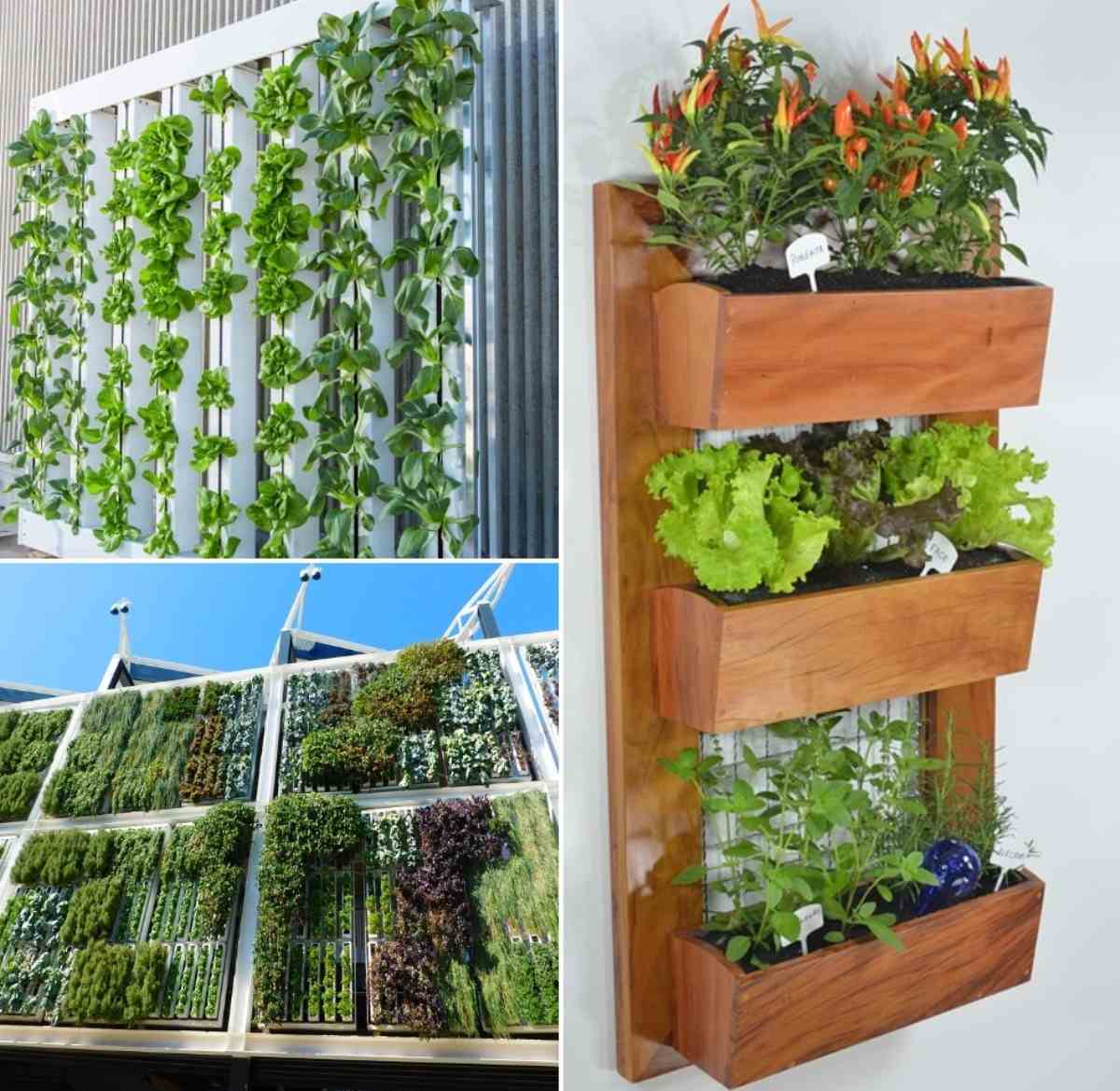 DIY Vertical Garden Ideas.