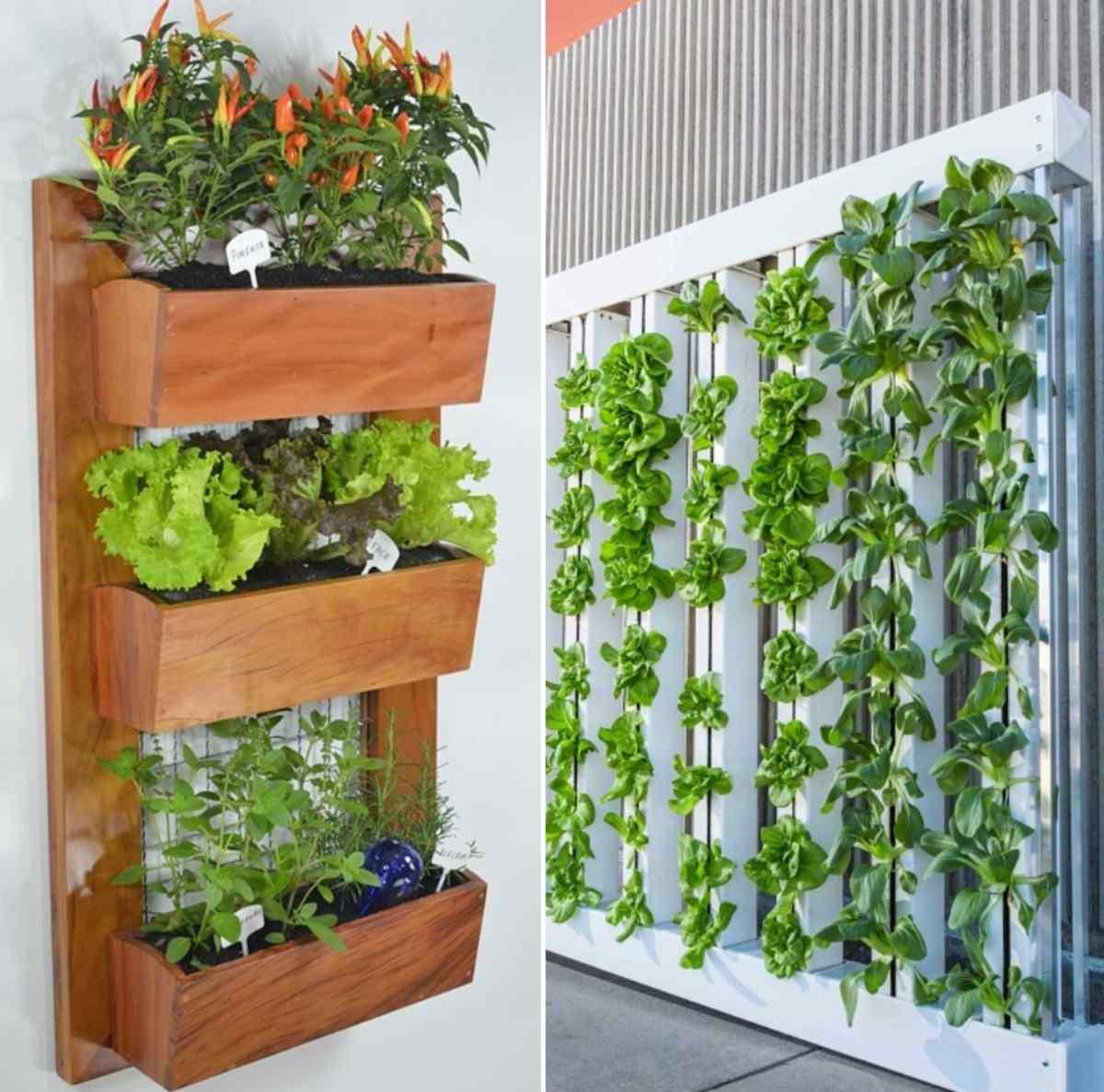 Vertical Gardening Techniques.