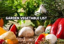 Gardening Vegetable List.