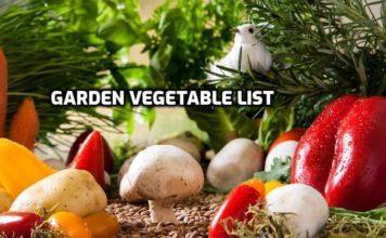 Gardening Vegetable List.
