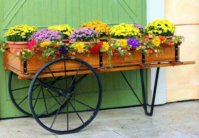 Potting Soil Mix for Flowers.