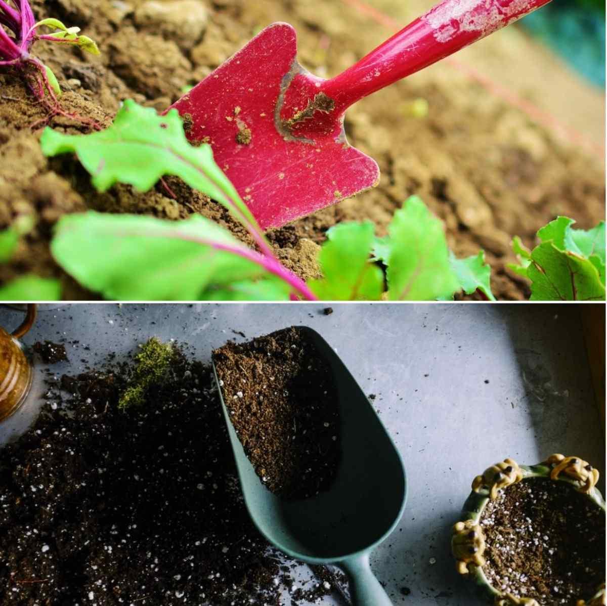 Types of Soil.
