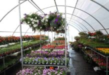 How to Build a Greenhouse.