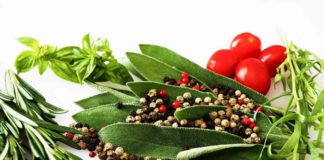 Growing Indoor Herbs and Edibles.