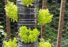 Vertical Garden Design Ideas.