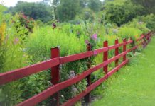 How to Build a Fence for your Garden.