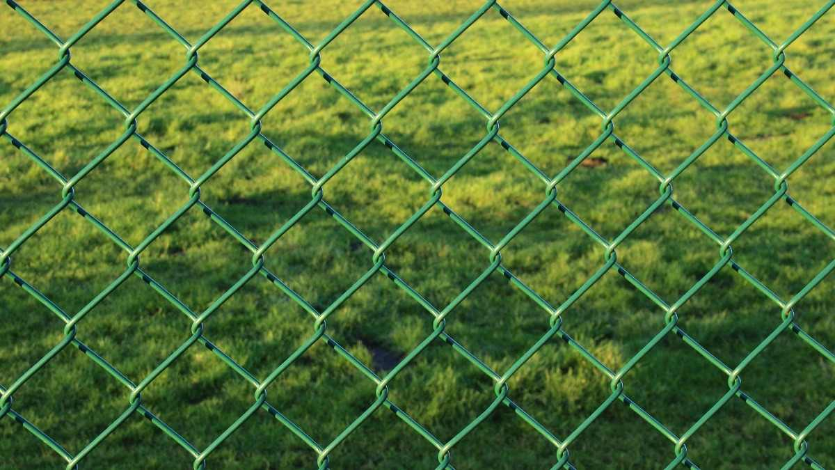 Wire Mesh Fence.
