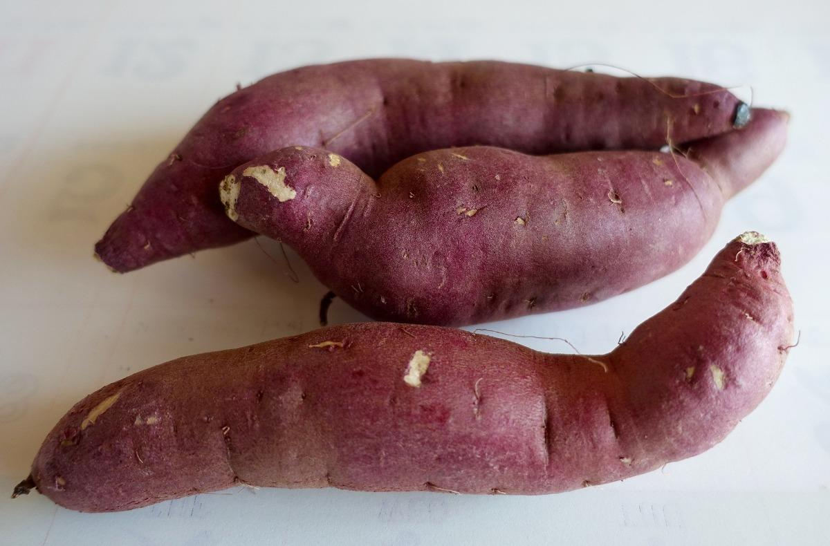 Guide for Sweet Potato Planting.